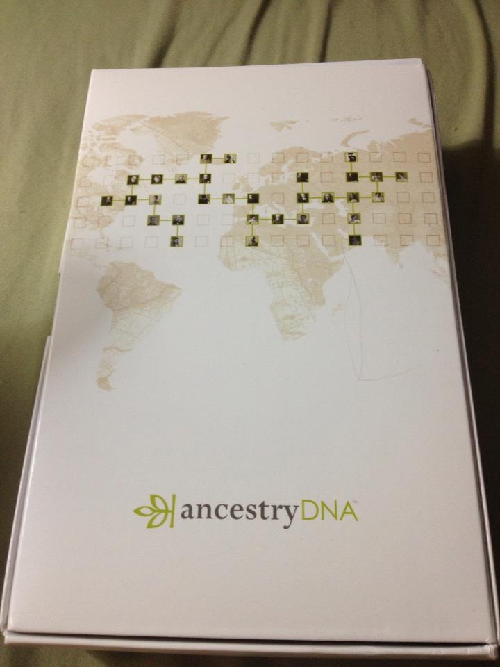 Ancestry DNA - yay or nay? | Jessica Jewett